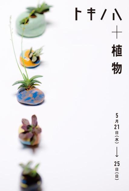 plants_omo-21